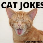 Funny Cat Jokes - Cat Humor