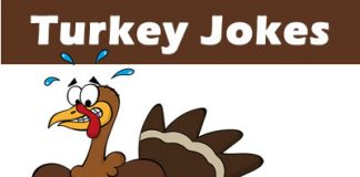 Turkey Jokes