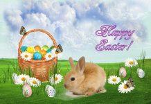 Happy Easter Jokes - Funny Jokes for Easter