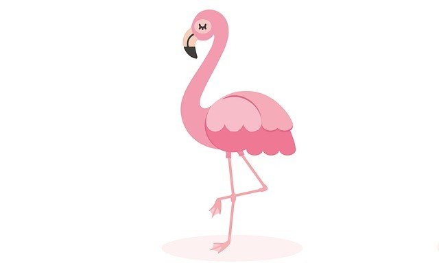 Funny Flamingo Jokes