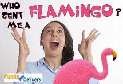 Send a Flamingo to Someone!!
