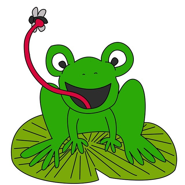 Frog Jokes - Funny Frog Jokes for Kids