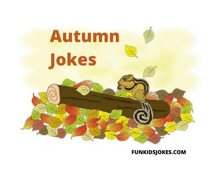 Autumn Jokes and Riddles