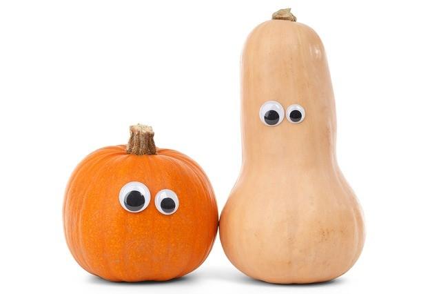Gourd Jokes - Funny Autumn Jokes