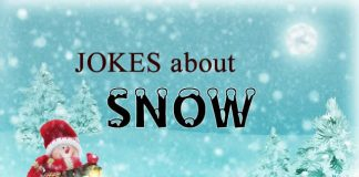 Jokes about Snow