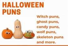 Halloween Puns - Clean Halloween Puns